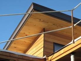 Soffits and Siding
