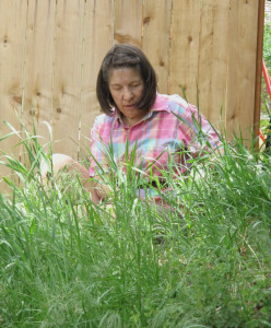 Dorothy - photographer, artist, Master Gardener takes on the role as weeder.