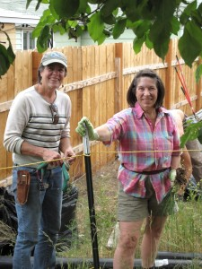 Yvonne Babb (left) and Dorothy Freudenberg tackling weeds. The team approach with good conversation and more hands makes the work more enjoyable.